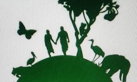Greenpeace critica fala de Bolsonaro sobre Amazônia e ONGs