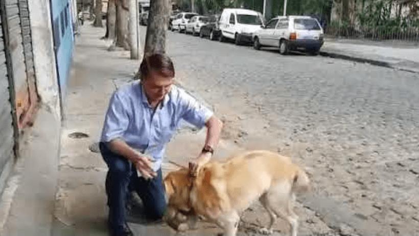 Bolsonaro cumpre mais uma promessa de campanha e anuncia criação de Secretaria dos Animais