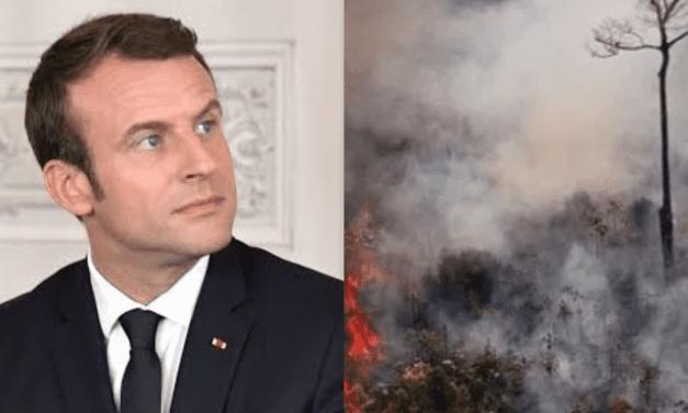 Sem incluir o Brasil, Macron anuncia aliança para proteção da Amazônia