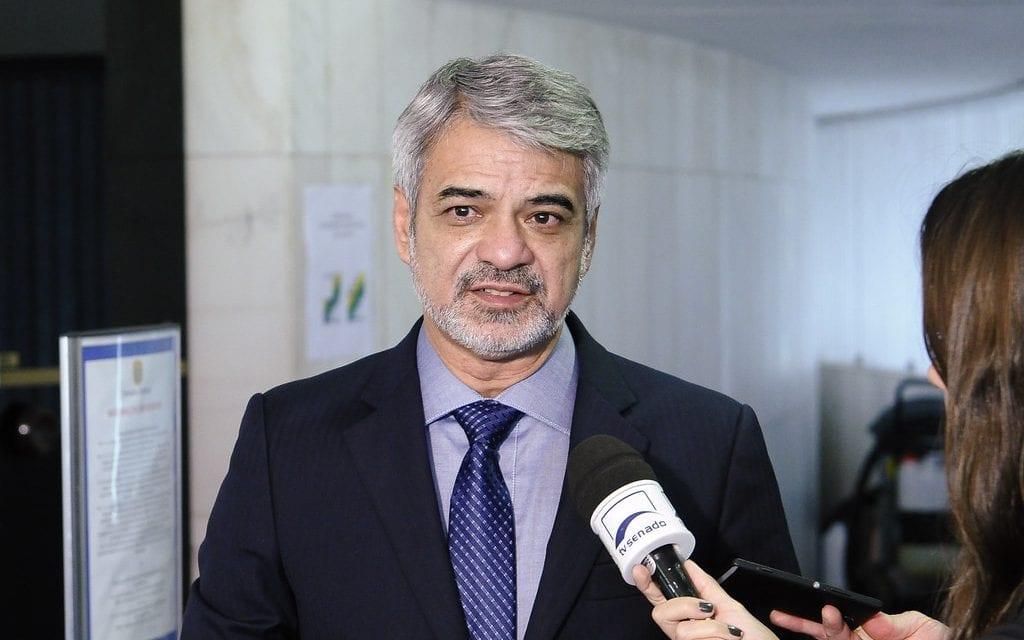 Senador petista tenta jogar nordestinos contra Bolsonaro, faz enquete, e acaba virando piada