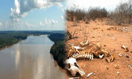 1% da vazão do Rio Amazonas seria capaz de acabar com a falta de água no Nordeste e em São Paulo, diz estudo