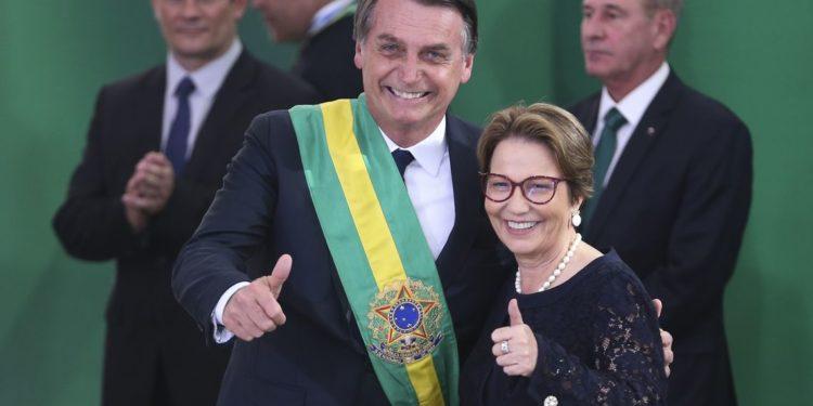 """Ministra de Bolsonaro, Tereza Cristina questiona jornal O Globo: """"Essa conversa nunca aconteceu"""""""